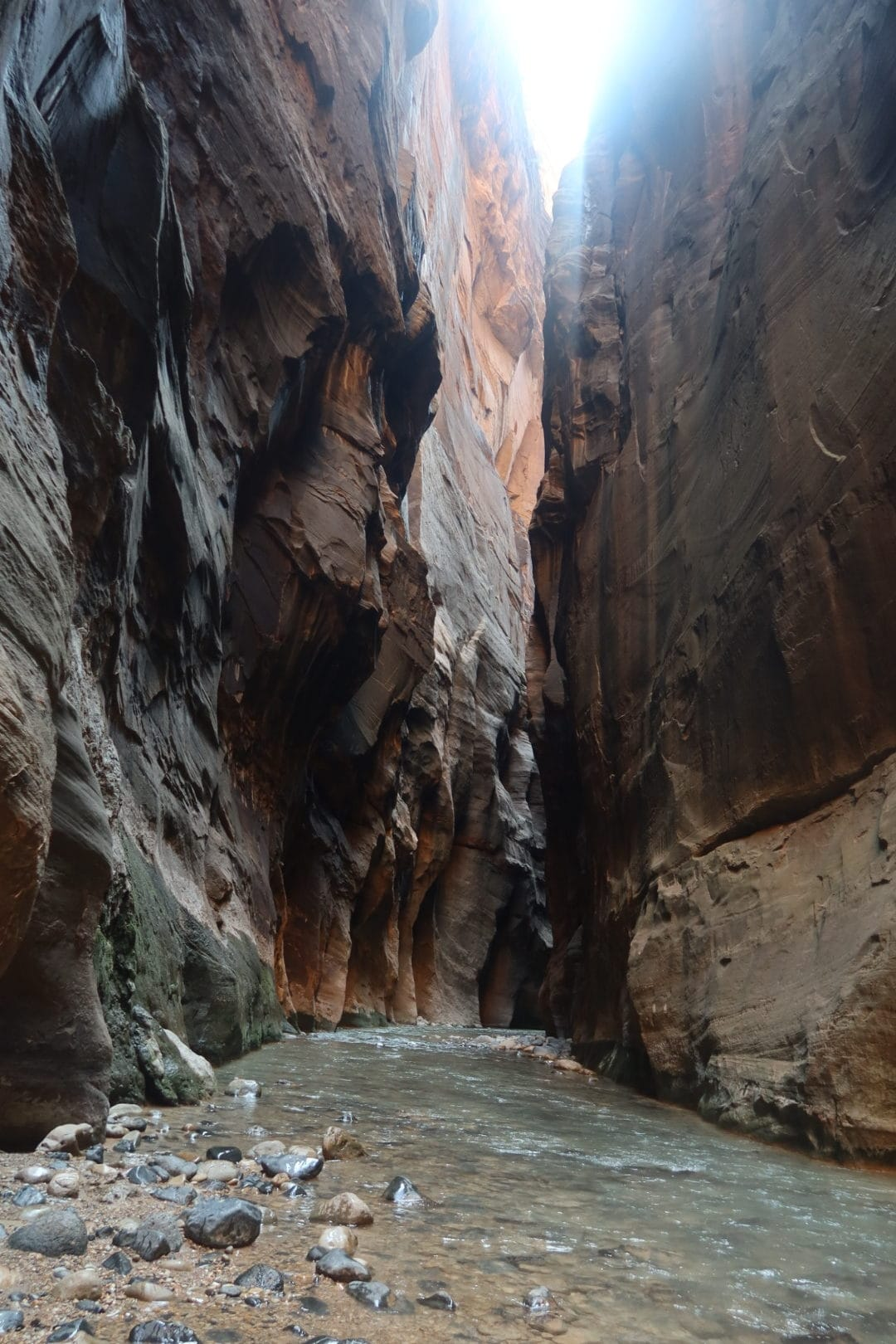 the narrows Zion national park 2020 WYOMING + UTAH ROAD TRIP ITINERARY :: 10 DAYS